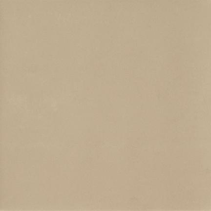 Beige Natural Floor/Wall Tile 12x12
