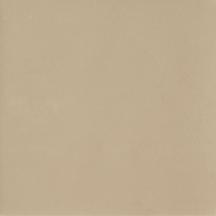 Beige Natural Floor/Wall Tile 24x24
