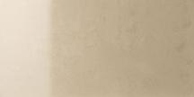 Cream Polished Floor/Wall Tile 12x24