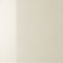 Snow Polished Floor/Wall Tile 24x24