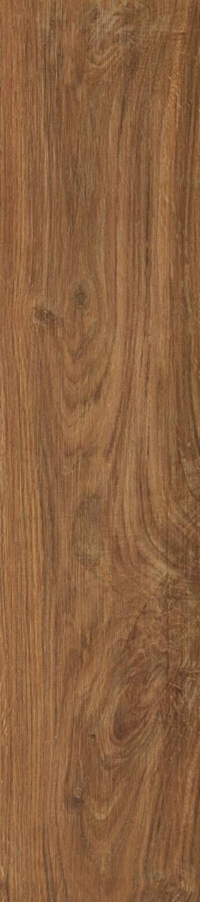 Chestnut Floor/Wall Tile 8x36