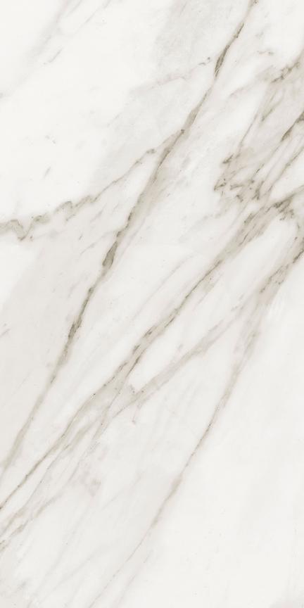 Calacatta Floor/Wall Tile (Matte) 12x24