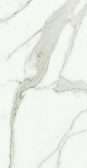 Calacatta Wall Tile 14x27