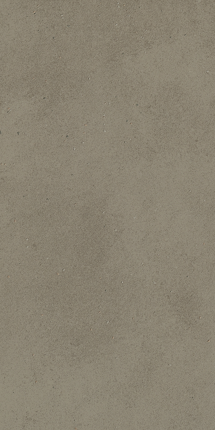 Taupe Floor/Wall Tile (Polished) 12x24