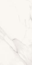 Calacatta Gold Wall Tile (Ceramic) 12.1x24.4