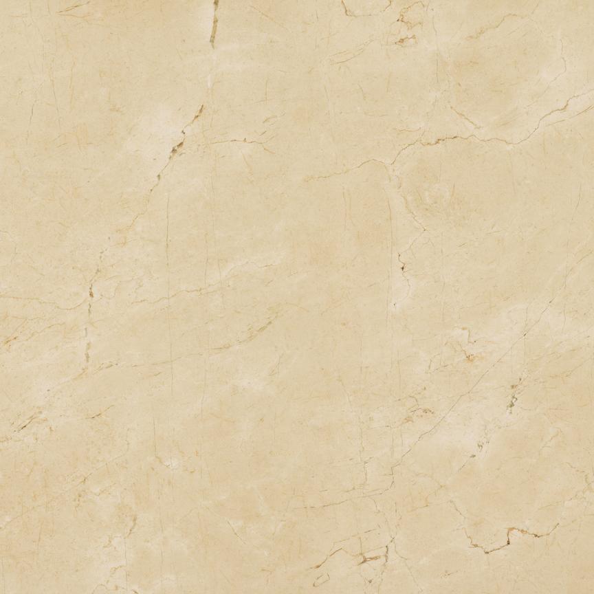 Grace Floor/Wall Tile (Matte) 24x24