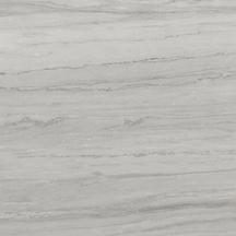 Beauty Floor/Wall Tile (Matte) 24x24