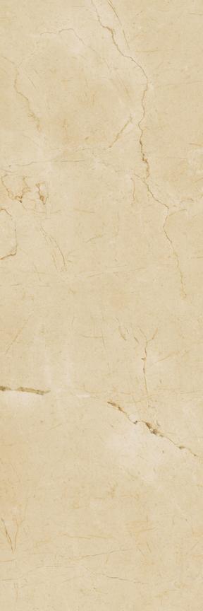 Grace Floor/Wall Tile (Matte) 8x24