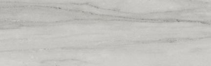 Beauty Floor/Wall Tile (Matte) 3.75x12