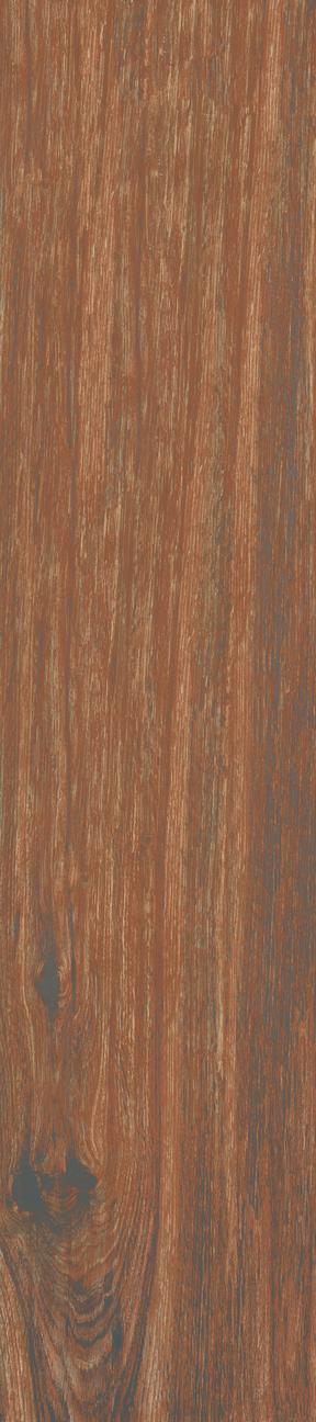 Walnut Floor/Wall Tile 8x36