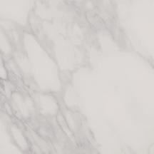 Honesty Floor/Wall Tile (Matte) 24x24