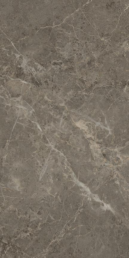 Charm Floor/Wall Tile (Polished) 12x24