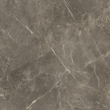 Charm Floor/Wall Tile (Polished) 24x24