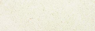 Dahlia Polished Floor/Wall Tile 3x9
