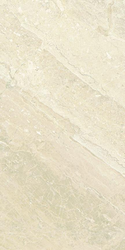 Giallo Polished Floor/Wall Tile 12x24