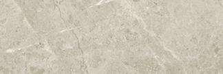 Argento Polished Floor/Wall Tile 3x9