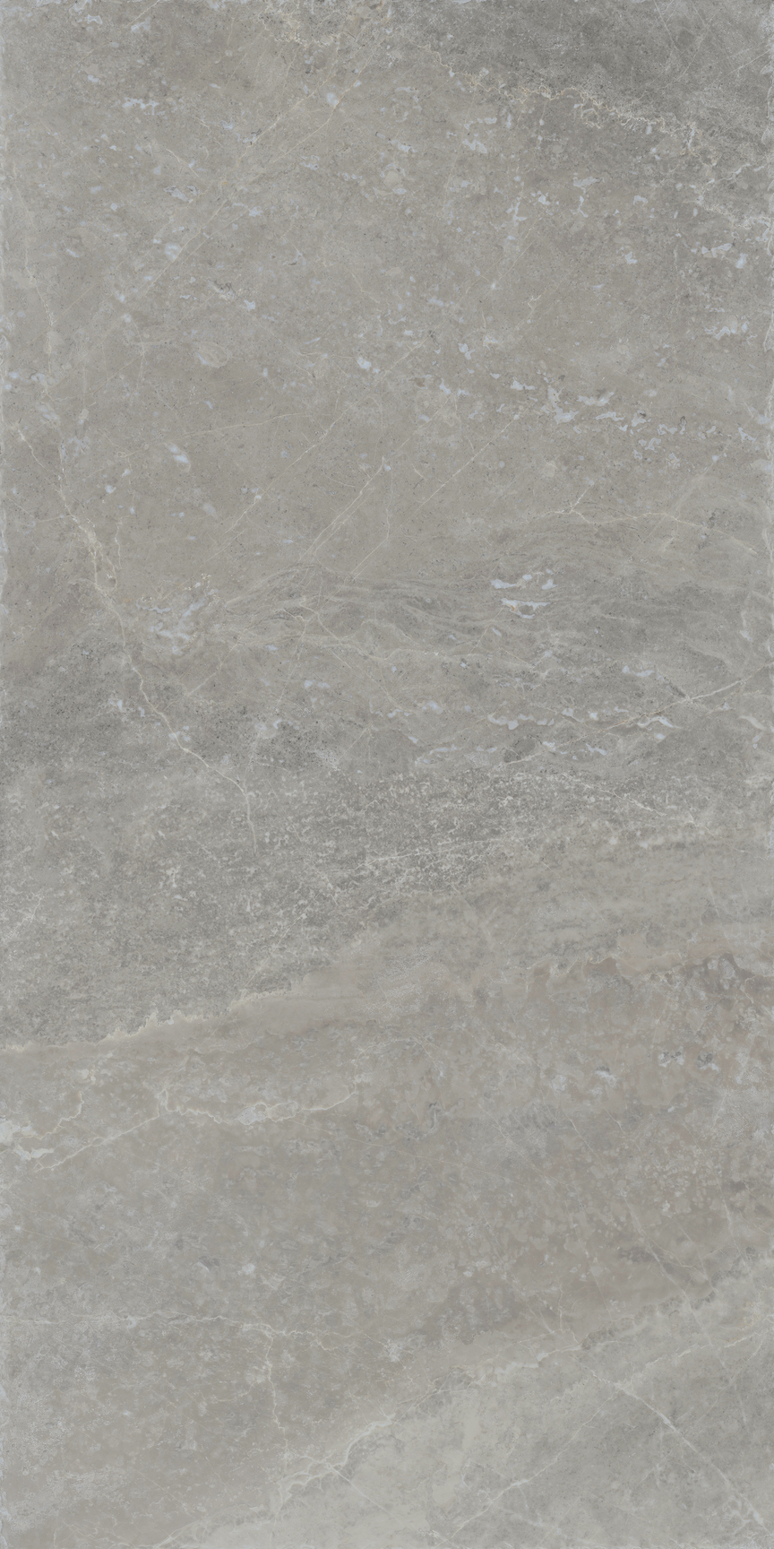 Loft Floor/Wall Tile 24x48