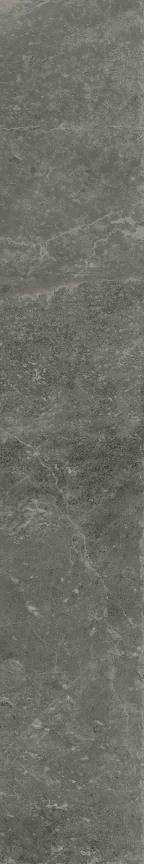 Salon Floor/Wall Tile 8x48