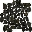 Black Pearl Flat Flat Pebble Mosaics 12x12