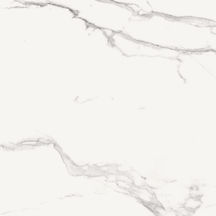 Calacatta Floor/Wall Tile (Matte) 24x24