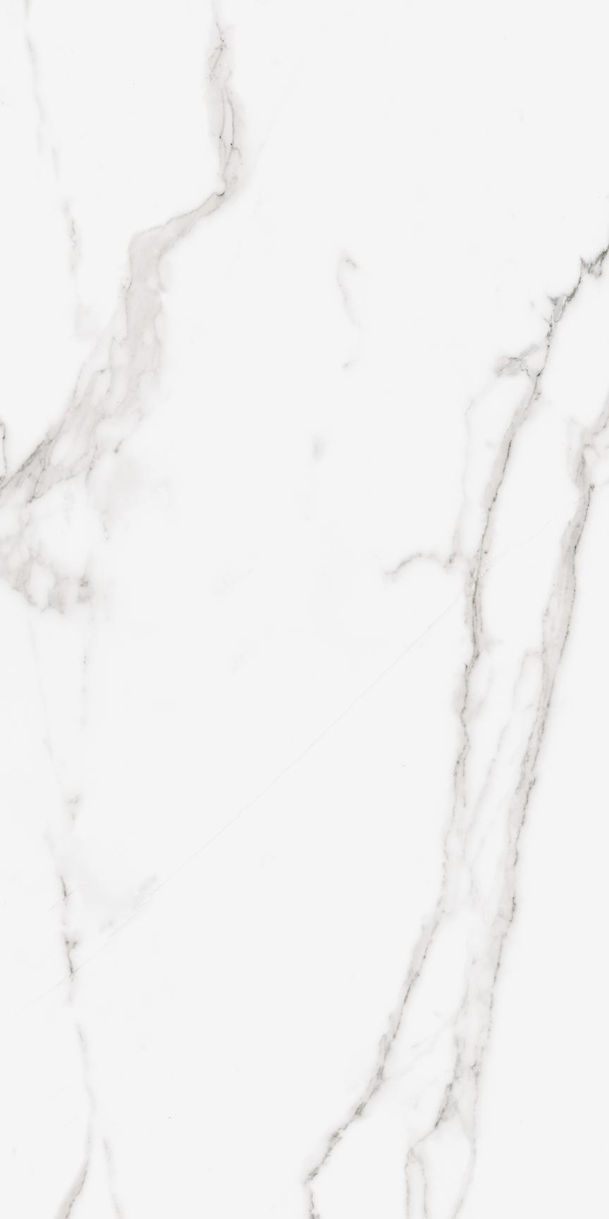 Calacatta Floor/Wall Tile (Matte) 24x48