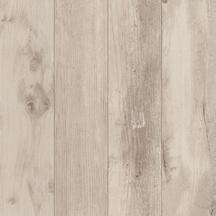 Florida Floor/Wall Tile 24x24